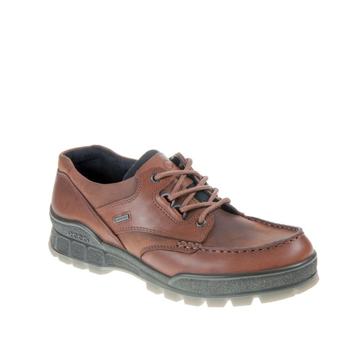 Ecco Track 25 Gore-Tex Lo Bison Walking Shoe