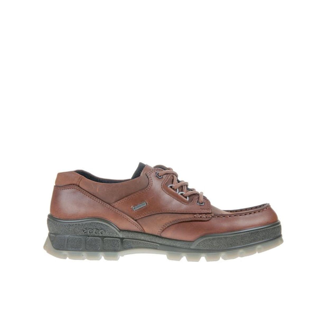 Ecco Track 25 Gore-Tex Lo Bison Walking Shoe
